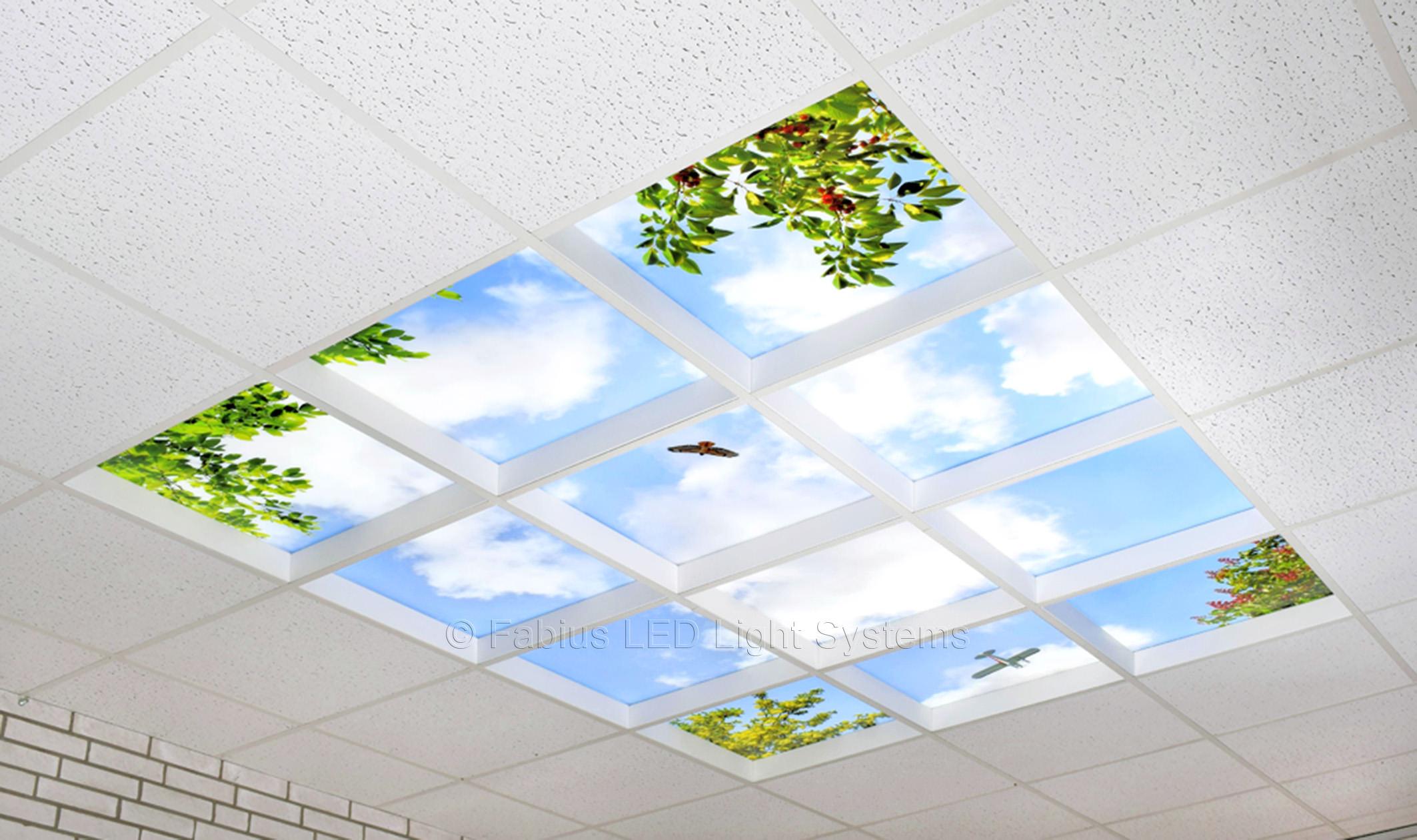 Häufig www.fabius-led.eu - Fabius LED Himmel Sky Panel Presentation Stand GE26